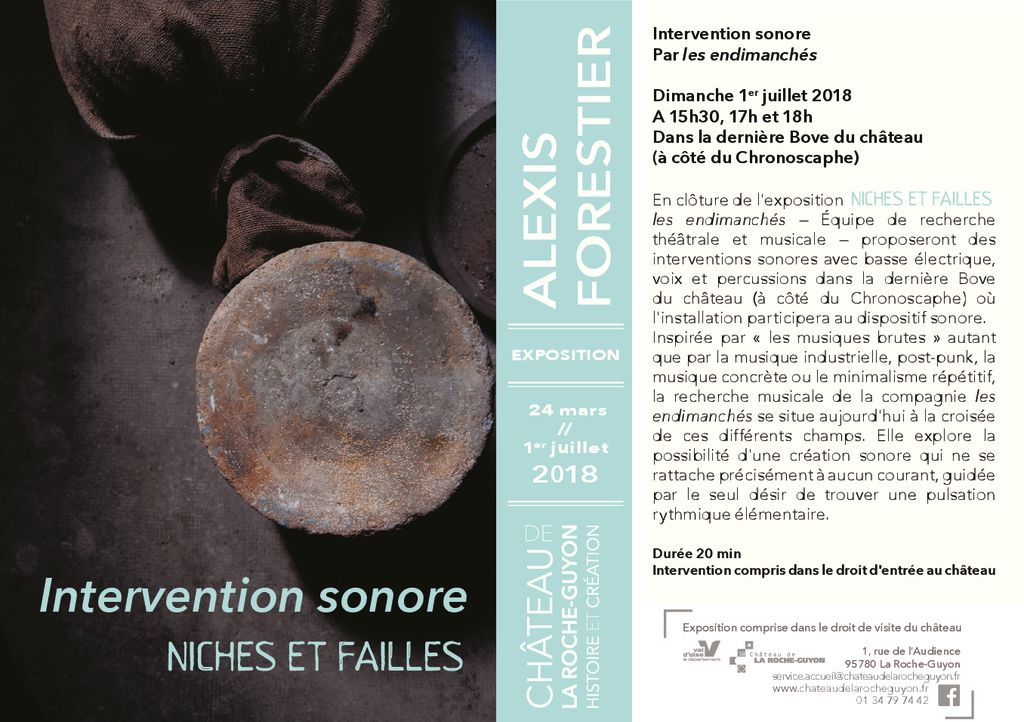 thumbnail of NichesEtFailles_InterventionSonore